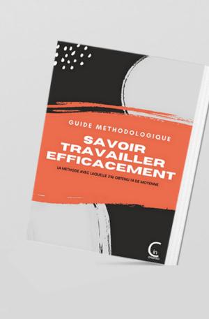 guide methodologique - savoir travailler efficacement